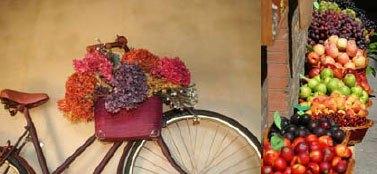 bici-e-fiori